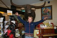 Charlie the waterbuffalo