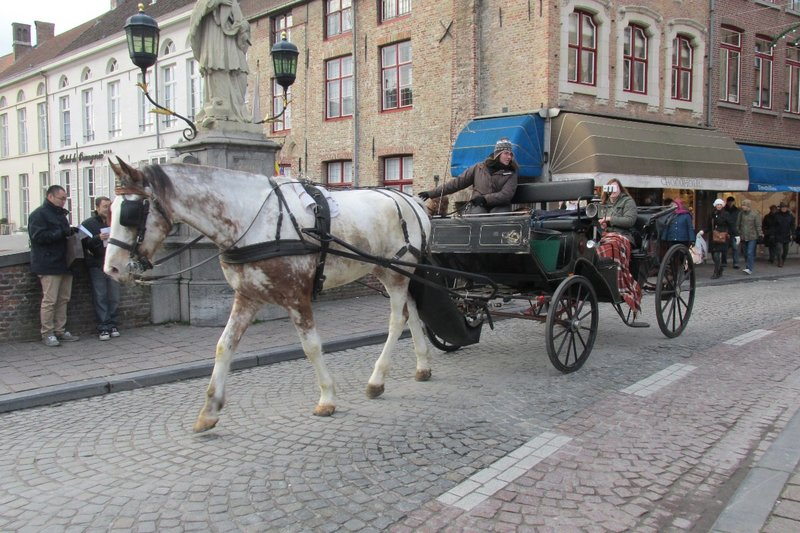 Horse and Cart transport