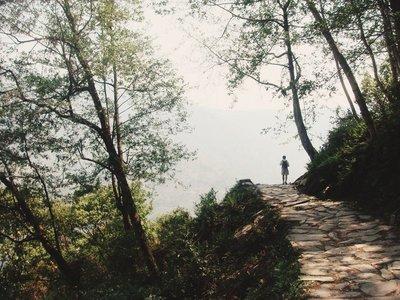 Solitary Trekker