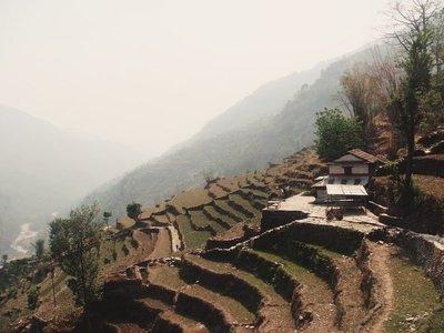 Endless Terraces