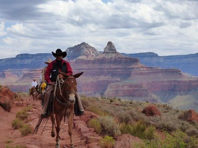 Cowboys in The Canyon