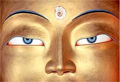 buddha-pic