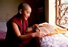 tibetan-buddhist-nun