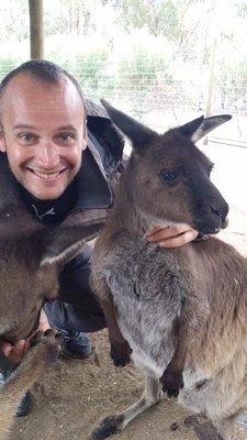 Selfs avec un kangourou