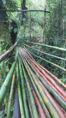 Millenium Cave : pont en bambou