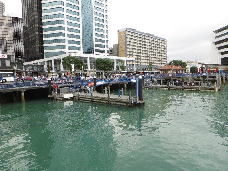 Auckland, à la marina