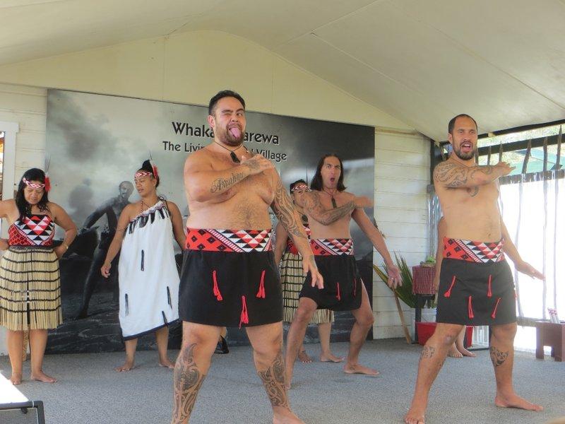 Whakapapapa vllage - haka traditionnel