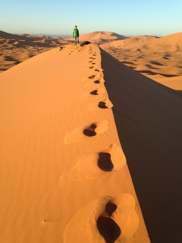 Our early morning views in the Sahara!