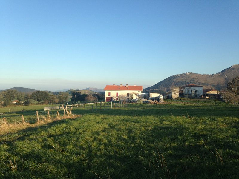 The building in the distance is our farm stay accommodation!