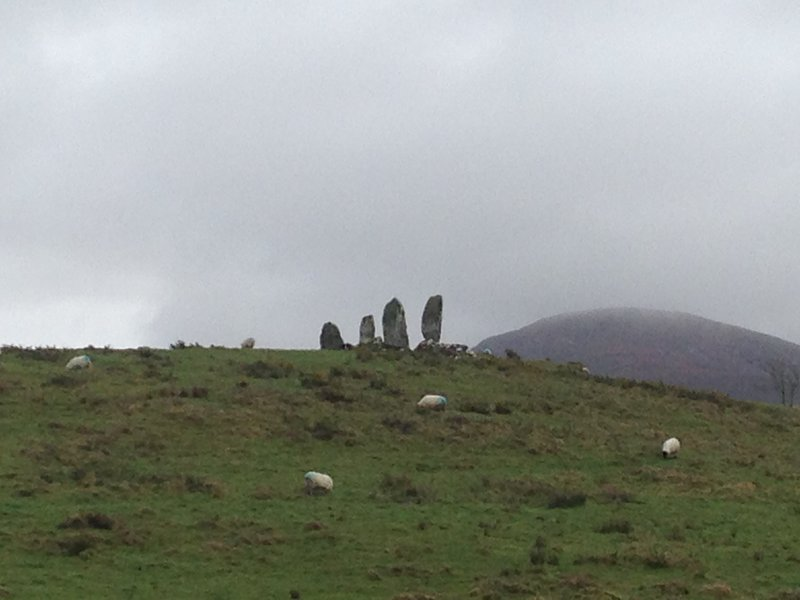 The Ring of Kerry - between Kenmare and Waterville (some standing stones in the middle of a paddock!)