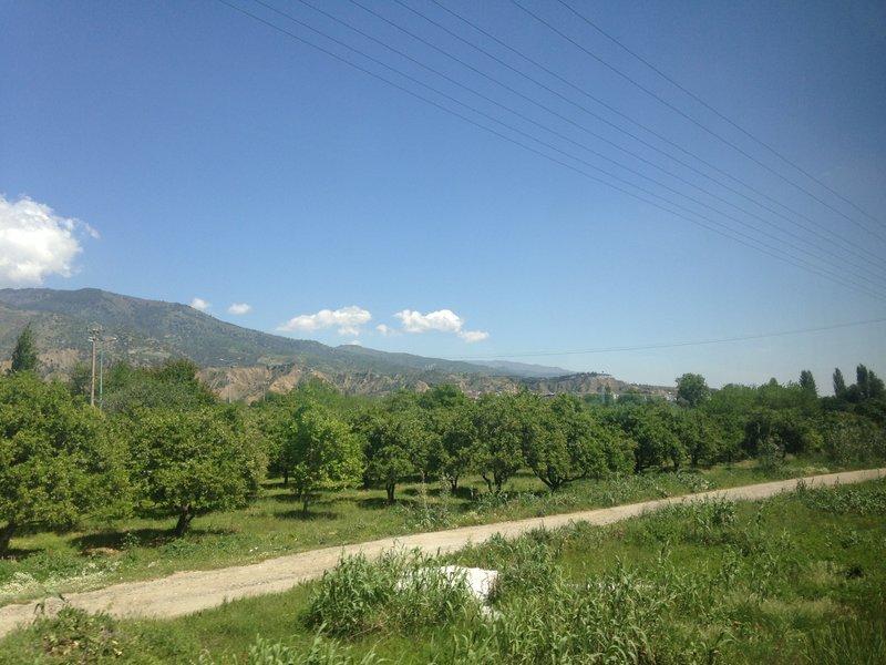 On the train to Pamukkale (Denizli)