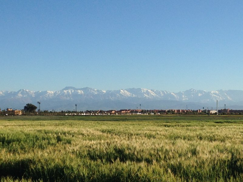 Looking out to the Atlas Mountains from just outside the Marrakech Medina