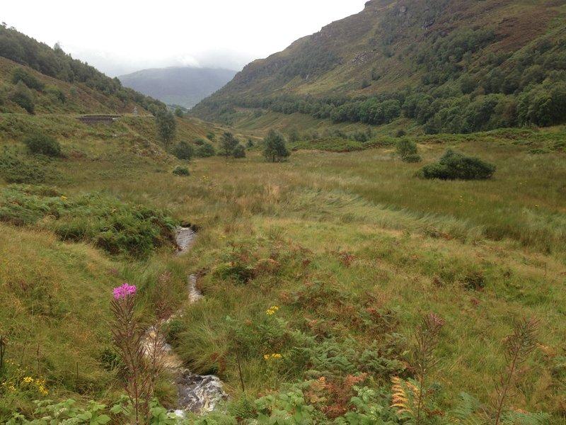 scotlandIMG_6678