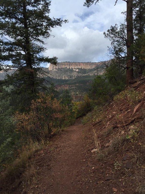 McCaulley Spings hike