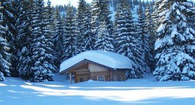 cute hut