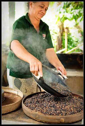 Roasting Coffee / BALI