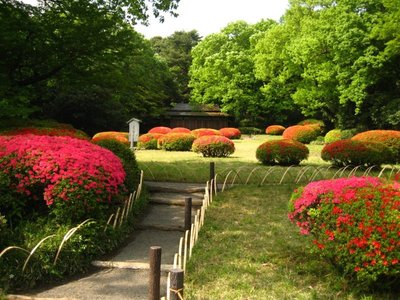 inner_garden.jpg