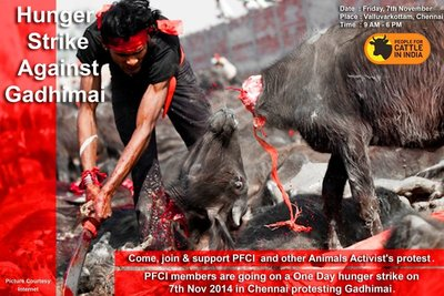 Animal Slaughtering in Gadhimai festival