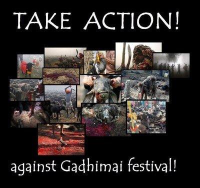 nepal-gadhimai-festival-november