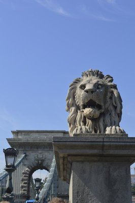 Lion statue on the Chain Bridge