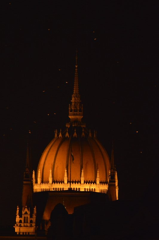 Notice the specks of lights around the dome of the Parliament Building.  These are bats flying around and having a buffet of insects that are attracted by the bright and powerful lights illuminating the building