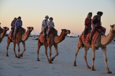 2015_July_.._on_camel_2.jpg