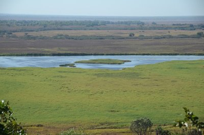 2015_July_..he_Wetlands.jpg