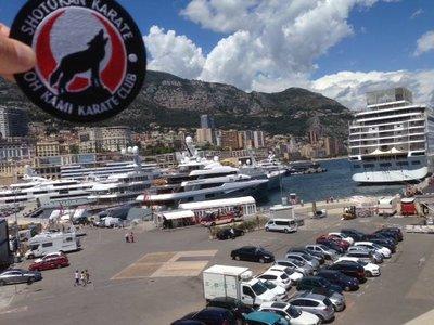 Oh Kami Monte Carlo2small.