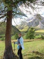 90_IMG_Lizzy_tree.jpg