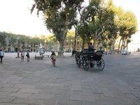 IMG_Lucca_Nap_Sq.jpg
