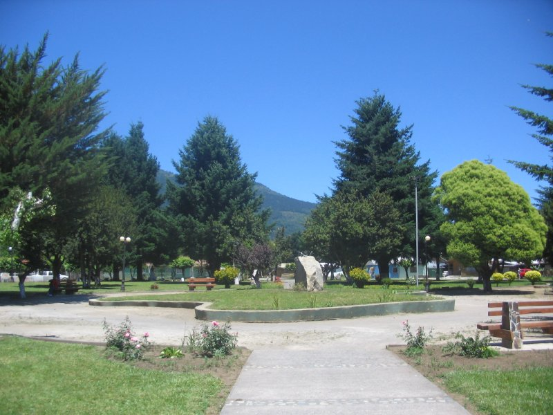 20100123 Malipeuco - Plaza 4
