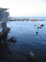 20091209_Con_Con_5.jpg