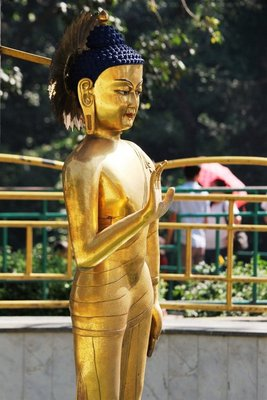 Statue of Buddha at monkey temple