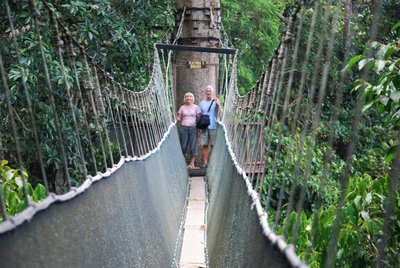 Canopy walk, Poring Hot Springs