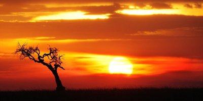 Sunset_.jpg