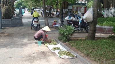 A street market lady setting up her vegatables to sell