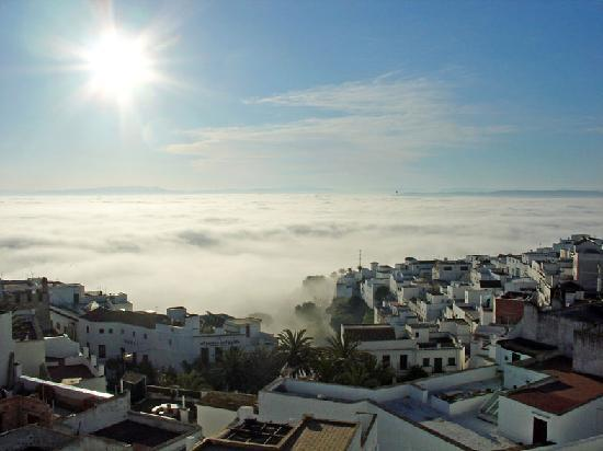 large_vejer-in-cadiz.jpg