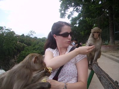 Feeding monkeys at Pashupatinath