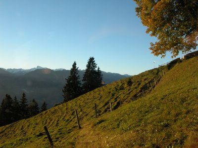High in the Hills - Mt Pilatus, Switzerland