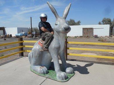 Jack Rabbit trading post