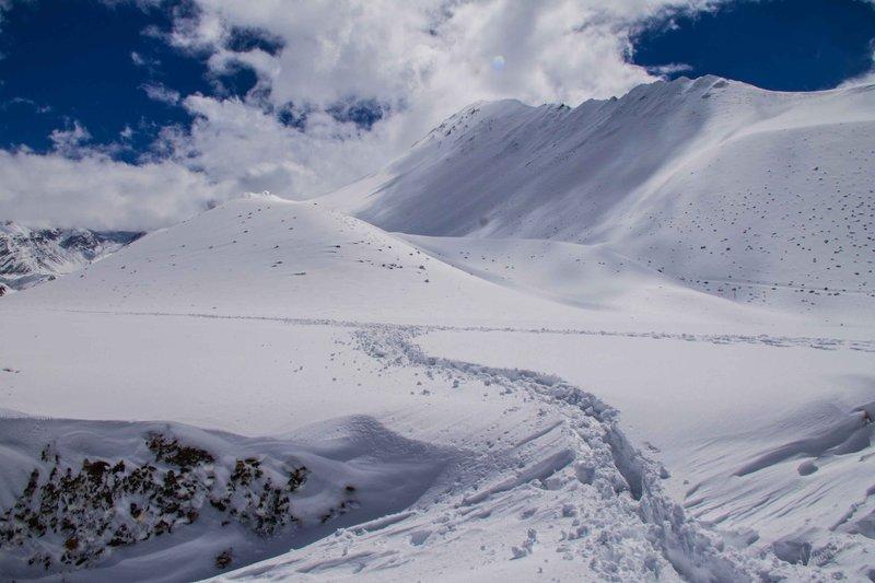 Snow Trails 2