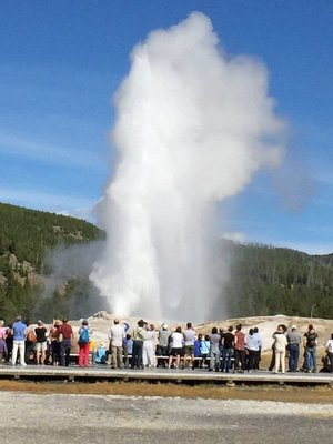 Old Faithful, right on time