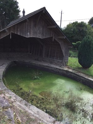 Place to wash your washing... but has a bad case of Duck Weed!!!