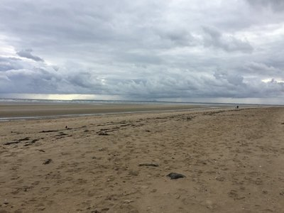 Utah Beach. Very windy... and lots of shells..