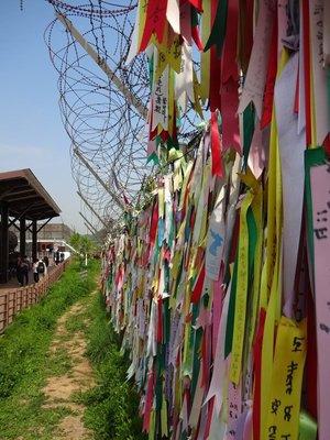Barbed Wire Fence, Imjinjak (DMZ)