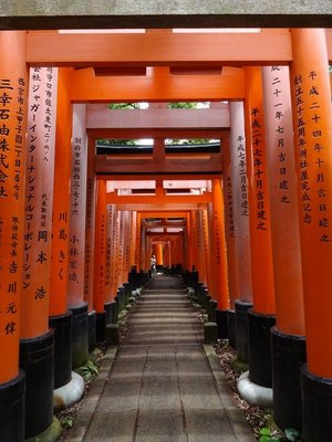 Torii (shrine gates), Fushimi Inari-Taisha