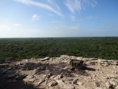 View from Ixmoja pyramid 24 metres up, Coba