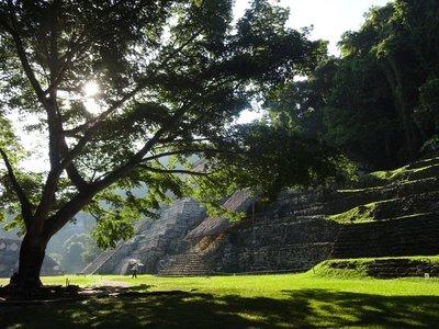 Early Morning, Templo de las Inscripciones, Palenque