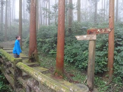 Which trail should we follow in the mist?