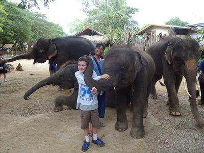 Hugging the elephants
